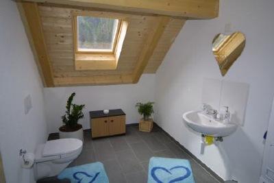 Gäste WC mit Dachfenster